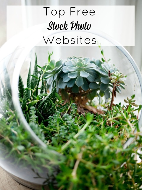 Top Free Stock Photo Websites