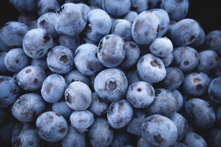 blueberries-690072_1280.jpg